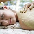 Massagem Essencias Naturais Parcial no Spa Aqua Center do Hotel Deloix