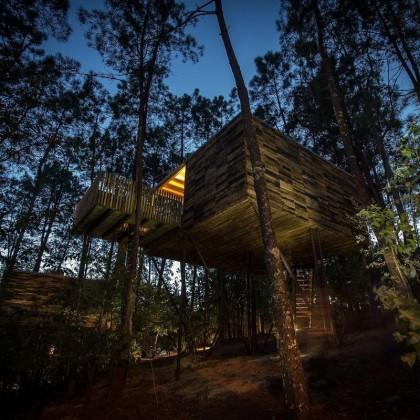 Bono Regalo en las Cabañitas del Bosque con Desayuno, Champán y Pétalos sobre la Cama en Outes