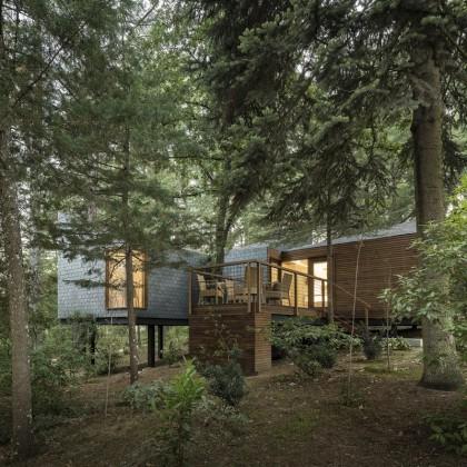 Gift Voucher Eco House Privilege em Pedras Salgadas SPA Nature Park
