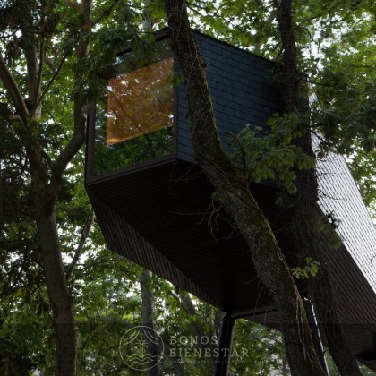 Gift Voucher Tree House em Pedras Salgadas SPA Nature Park