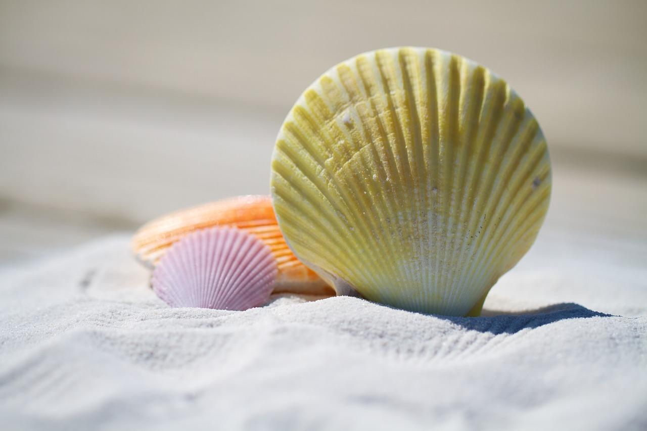 La arena es uno de los componentes de la talasoterapia